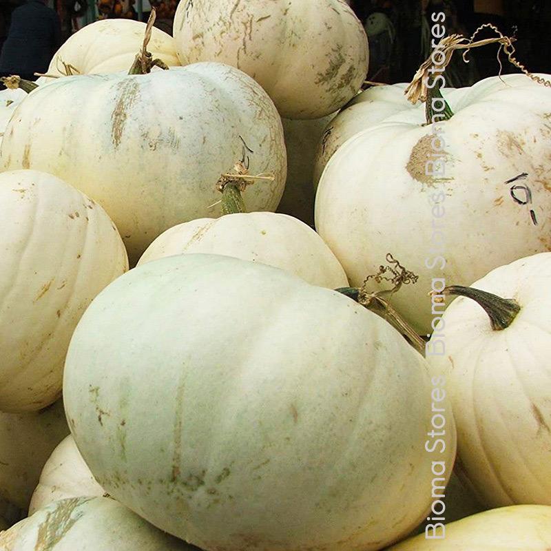 άσπρη biomastores.gr 4