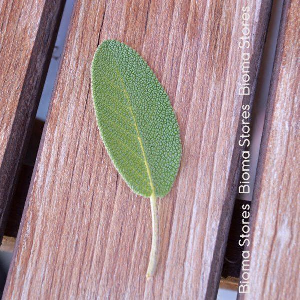 βότανα φασκόμηλο biomastores.gr 2