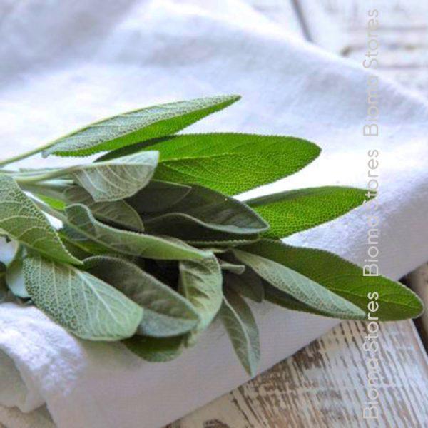 βότανα φασκόμηλο biomastores.gr 6