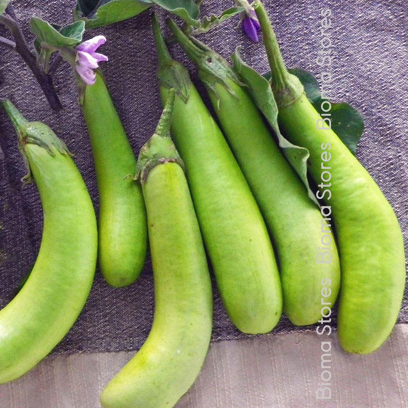 πράσινη λουϊζιάνα biomastores.gr 3