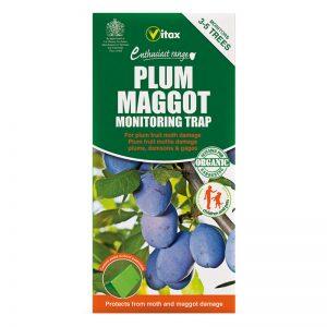 Vitax Plum Maggot Trap 1473761010