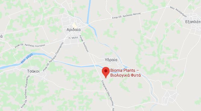 bioma google 1