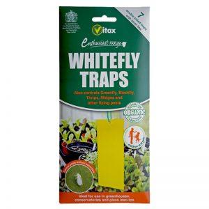 vitax white fly traps pagides