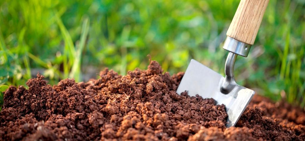 κήπος σας έχει το κατάλληλο έδαφος biomastores.gr 6.