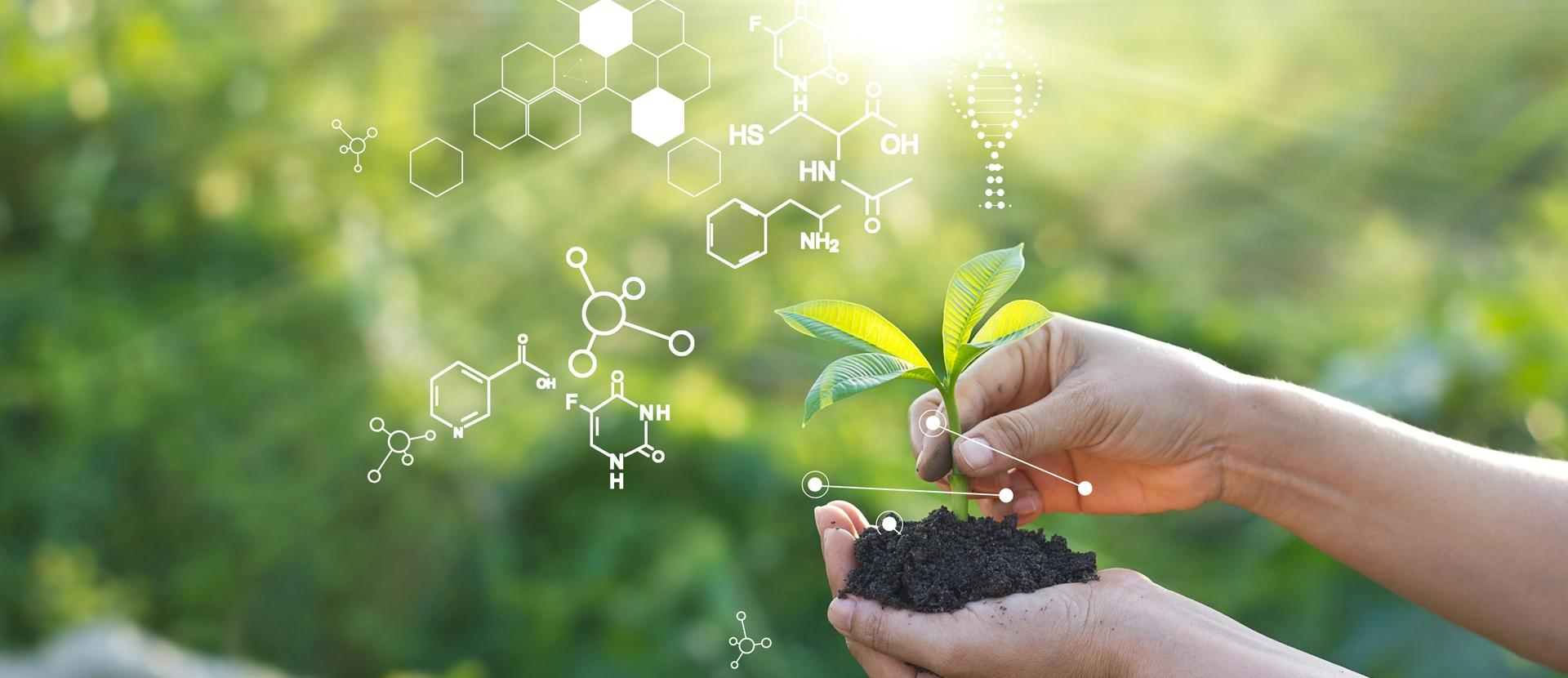 στην οικολογική γεργία biomastores.gr