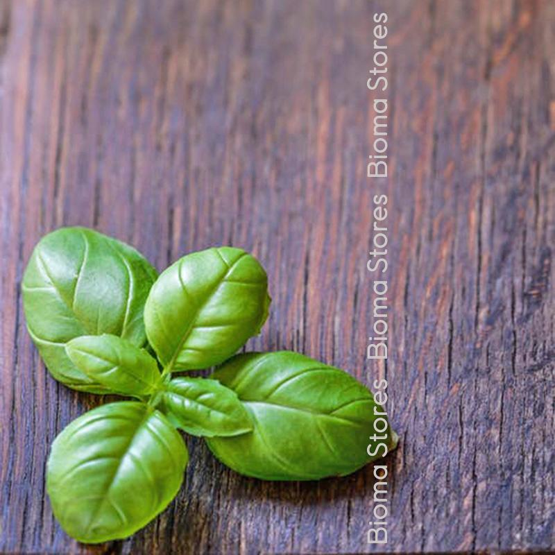 πλατύφυλλος pesto biomastores.gr 1