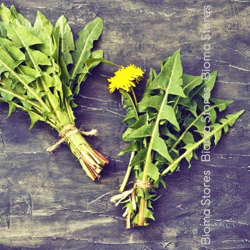 Ταραξάκου biomastores.gr 4
