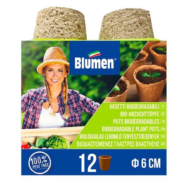 12 Στρογγυλά γλαστράκια κοκκοφοίνικα biomastores.gr .