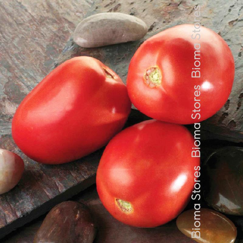 ηλιδα βιομηχανική σάλτσα biomastores.gr 1