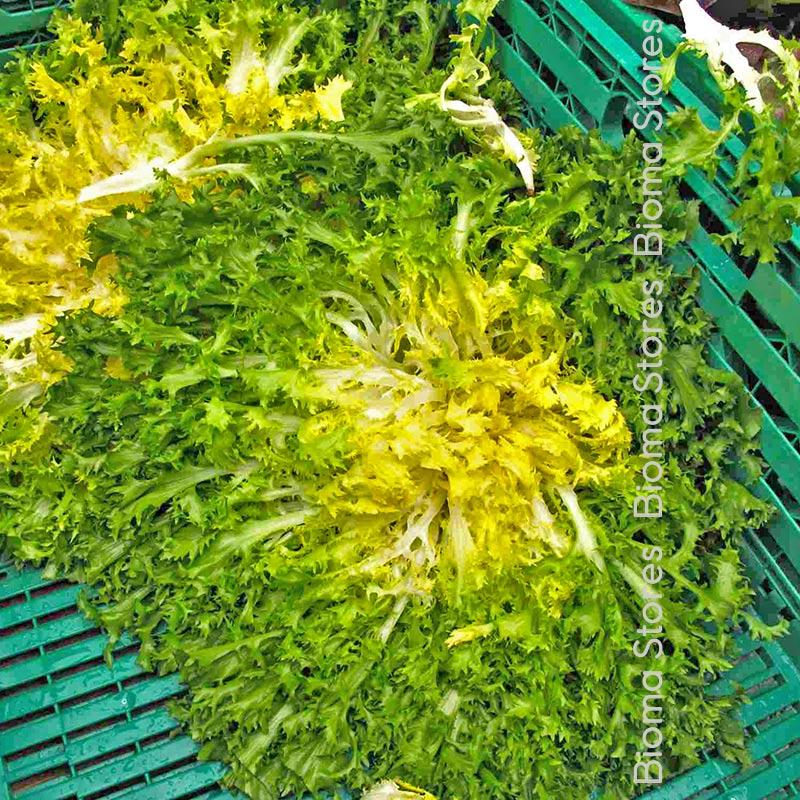 alaska biomastores.gr 3