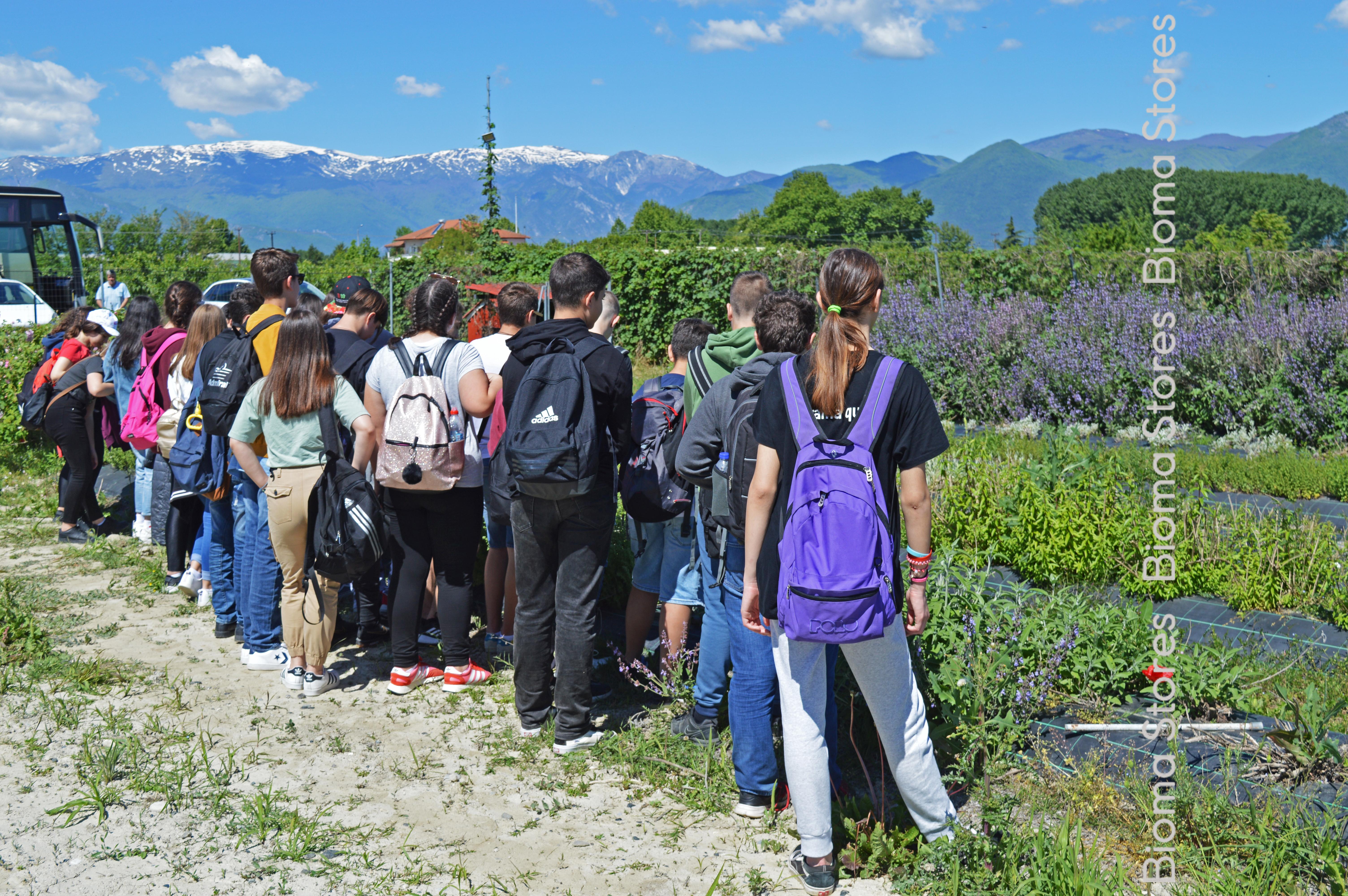 Επίσκεψη μαθητών στο φυτώριο